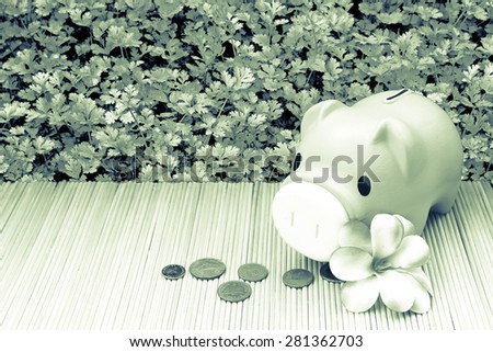 pink piggy bank and coin on parsley garden background in green tone - stock photo