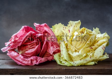 Pink Radicchio and radicchio variegato from Verona - stock photo