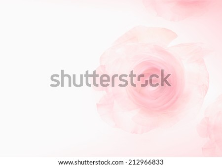 Pink rose background (Soft watercolor) - stock photo