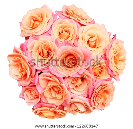 Pink rose border with white space - stock photo
