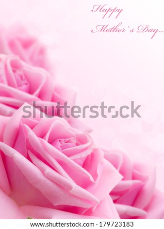 Pink rose. Card by Mother`s Day. Selective focus. - stock photo