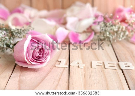 pink roses and petals for valentines day, love concept - stock photo
