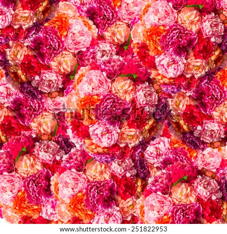 pink roses Heart form isolated on white background - stock photo