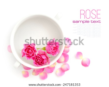 Pink roses in a cup of fragrant water on a white background - stock photo