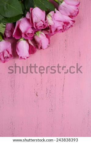 Pink Roses on pink wood background, vertical with copy space for your text here. - stock photo