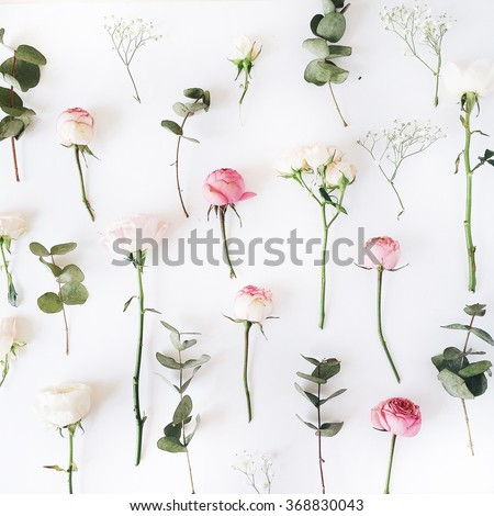 Pink roses on white background. Flat lay, top view - stock photo