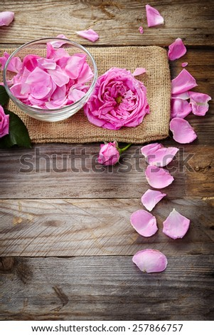 pink roses on wooden background - stock photo