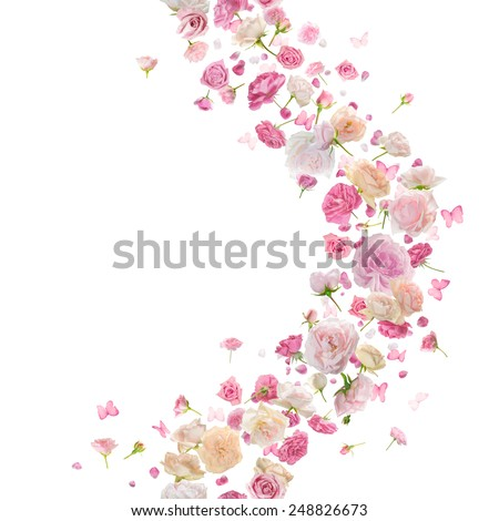 pink roses, petals and butterflies breeze garland, vertically repeating studio photographed and isolated on white - stock photo