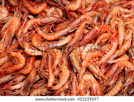 pink shrimps - stock photo