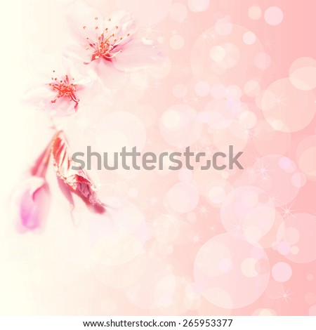 Pink spring background with an apple-tree flower - stock photo