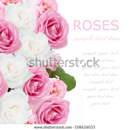 Pink,tea and white roses wedding background isolated on white with sample text - stock photo