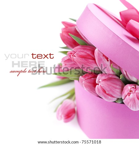 Pink tulips and gift box on a white background (with sample text) - stock photo