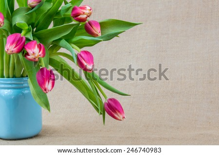 pink tulips in a light blue vase with a textured background - stock photo