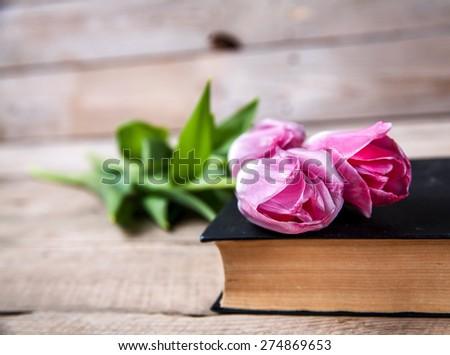 pink tulips on a pile of old books - stock photo