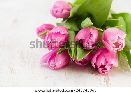 pink tulips on white wooden background - stock photo