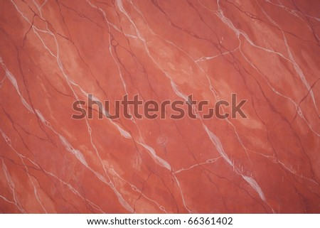 Pink with white veins - stock photo