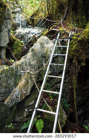 Pinnacles trek in gunung mulu national park - stock photo