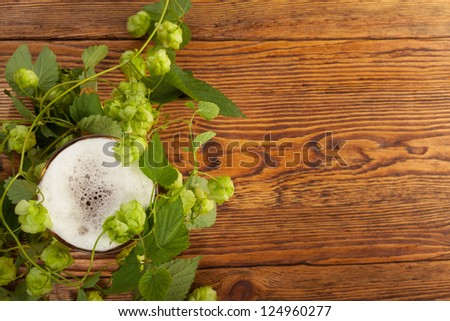 Pint and hop plant - stock photo