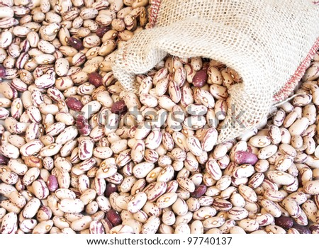 Pinto beans in small bag on pinto beans background - stock photo