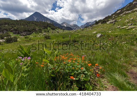 Pirin Mountain Landscape, Bulgaria - stock photo