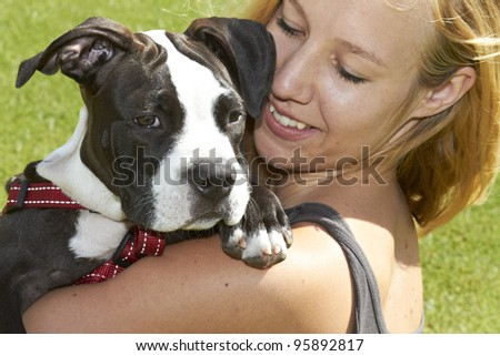 Pit Bull dog breed looking over shoulder - stock photo