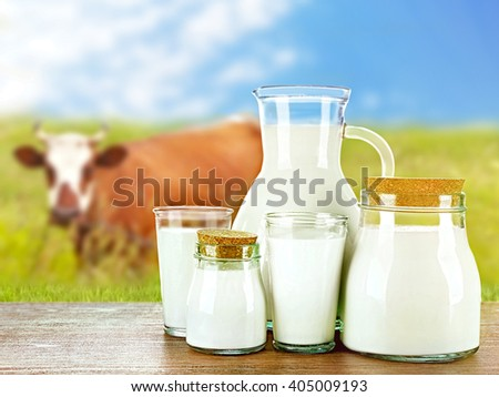 Pitcher, jars and glasses of milk on wooden table against cow and blue sky background - stock photo