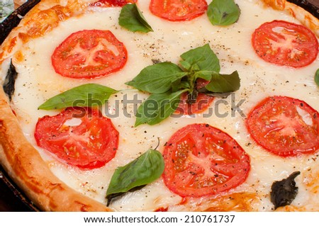 pizza mozzarella - stock photo