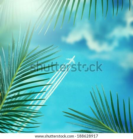 Plane fly above the palms on sky background  - stock photo