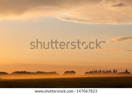 Plane over rural landscape in fog - stock photo