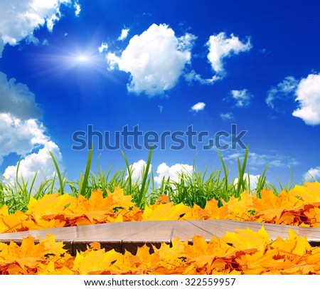 planed floor and grass on the background bokeh - stock photo
