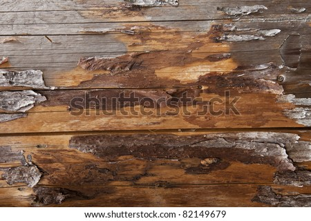 Plank Background, Grunge wooden background. Wood Texture. \ Natural wooden background - stock photo