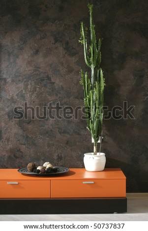 plant - stock photo