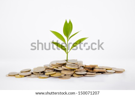 plant and coins , currency, investment and business concepts - stock photo