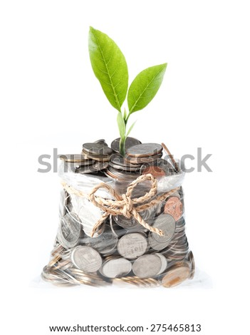 plant and coins in plastic bags on white background, investment and business concepts - stock photo