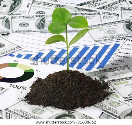 plant, and finances - stock photo