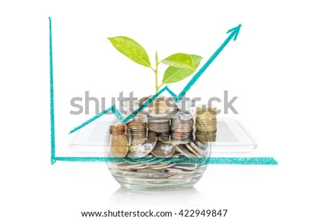 Plant Growing from Savings Coins. Saving and Interest Concept - stock photo