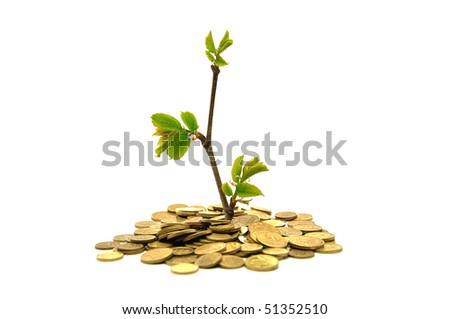 Plant growing from the money - stock photo