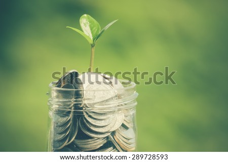 plant growing out of coins with filter effect retro vintage style - stock photo