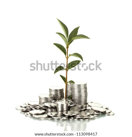 plant growing out of silver coins isolated on white - stock photo