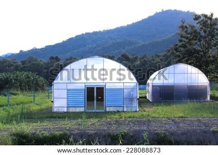 plant nursery greenhouse - stock photo