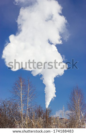 Plant pipe smoking over the small birch against blue sky by winter - stock photo