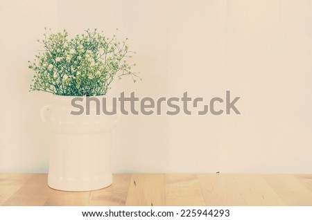 Plant process vintage instagram effect style picture - stock photo
