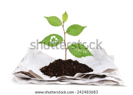 Plant with recycle symbol growing from paper isolated on white - stock photo