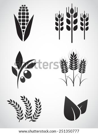 Plantation icon set. - stock photo