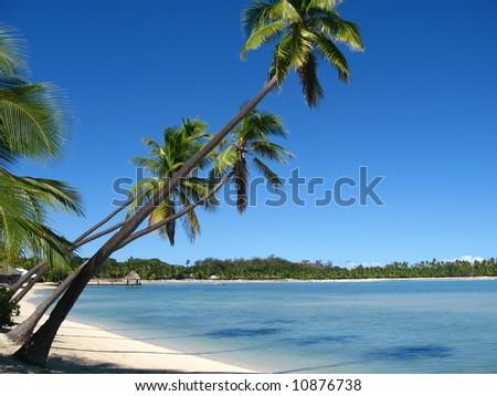 Plantation island, Fiji - stock photo