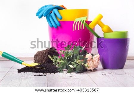 Planting and gardening concept. Colorful flower pots, plant  and gardening equipment on bright wooden floor  - stock photo