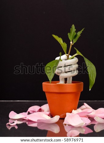 Planting New Energy Resources Concept - stock photo