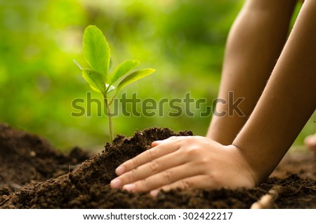 Planting,Seeding,Seedling,Close up Kid hand planting young tree over green background - stock photo