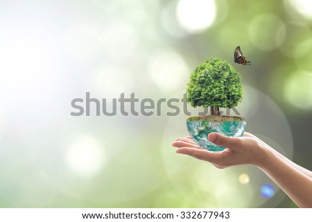 Planting tree in green soil globe on woman human hands with a butterfly on blur natural bokeh background of greenery: Saving environment conservation concept: Elements of this image furnished by NASA - stock photo