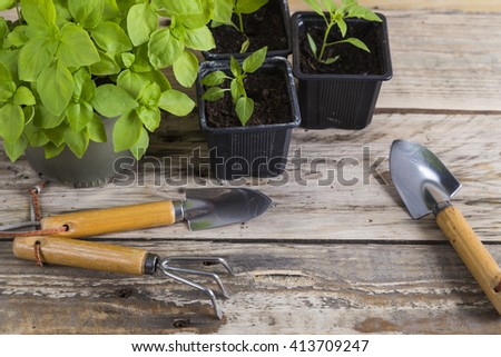 Plants and gardening tools - stock photo